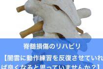 脊髄損傷のリハビリ【闇雲に動作練習を反復させていれば良くなると思っていませんか?】