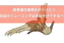 腓骨遠位端骨折のリハビリ【足趾のトレーニングは各趾分けてするべき】